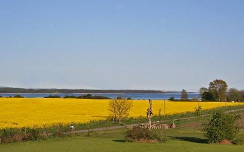 Boddenblick von der Ferienanlage Süderhof Rügen auf der Halbinsel Wittow