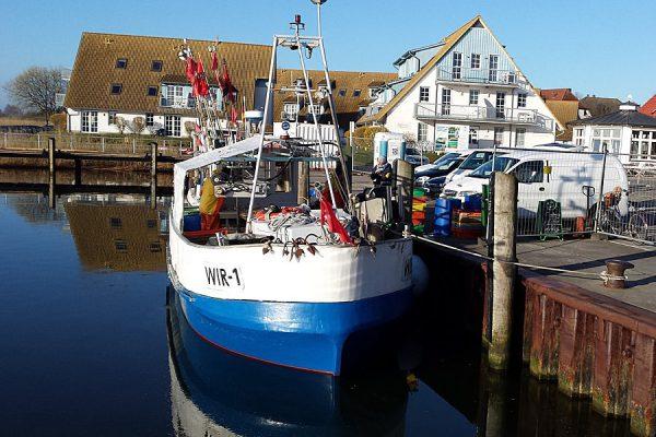 Fischerboote liegen im Hafen von Breege auf der Halbinsel Wittow im Norden von Rügen