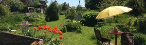 Kaffee und Kuchen essen im Garten vom Blumencafé in Wiek auf der Insel Rügen