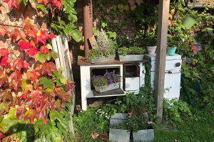 Garten vom Blumencafé in Wiek auf der Insel Rügen