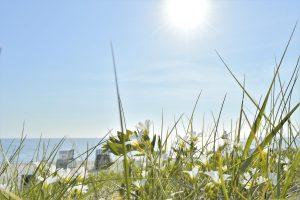 Sonnenstrahlen am Strand